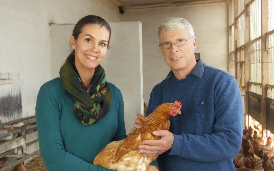 Bundesverband Tierschutz zeichnet haehnlein-Konzept aus