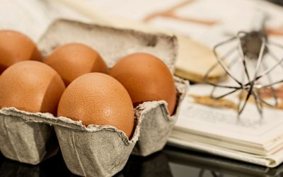 Multitalent in der Küche – Eigelb und Eiklar