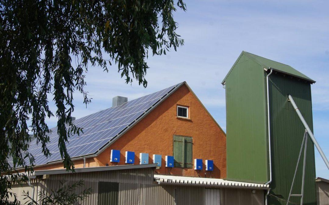 Umweltschutz bei haehnlein-Verantwortung für die Natur