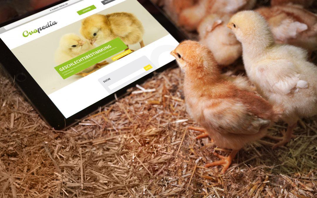 """Auf der neuen """"Ovopedia"""" finden Küken ihr virtuelles Nest"""